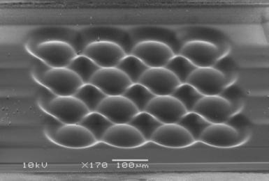 Micro lens array of 100um of PMMA